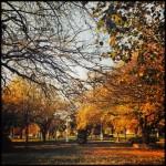Fenerbahçe Parkı'nın Anlatılmaz Güzelliği