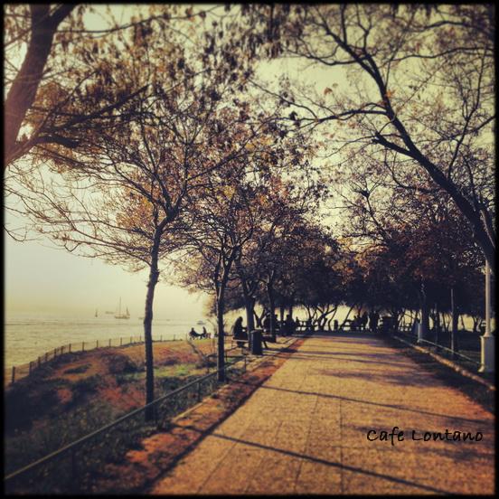 Fenerbahce Parkı 9