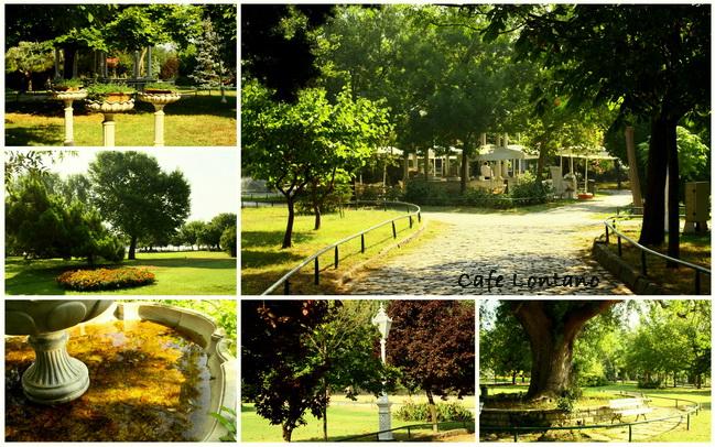 Fenerbahce parkı 3