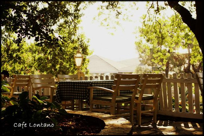 Fenerbahce parkı 5