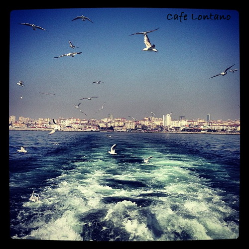 Istanbul 24