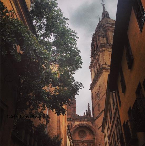 Salamanca 8