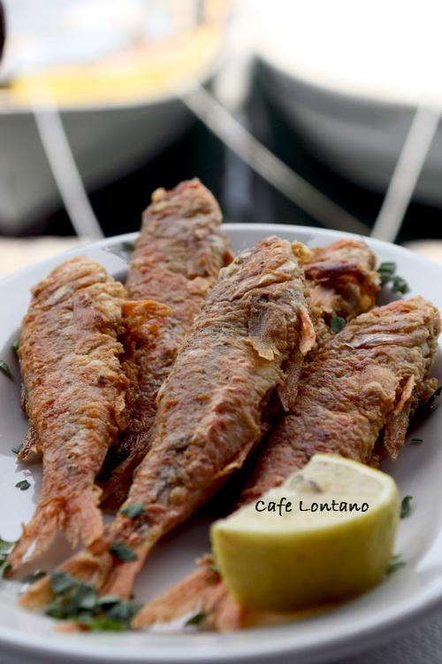 Midilli, barbun balık