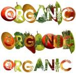Doğal beslenmek ve doğaya zarar vermeden yaşamak için bir kaç kaynak önerisi